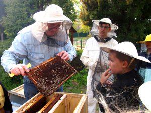 Mezigenerační kroužek včelaření