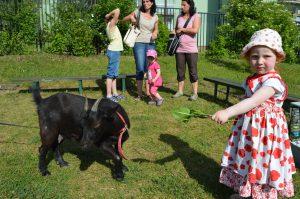 Na zahradní slavnost Linky jedině s kozou Lízou