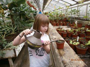 Botanický kroužek Jirky Trávníčka