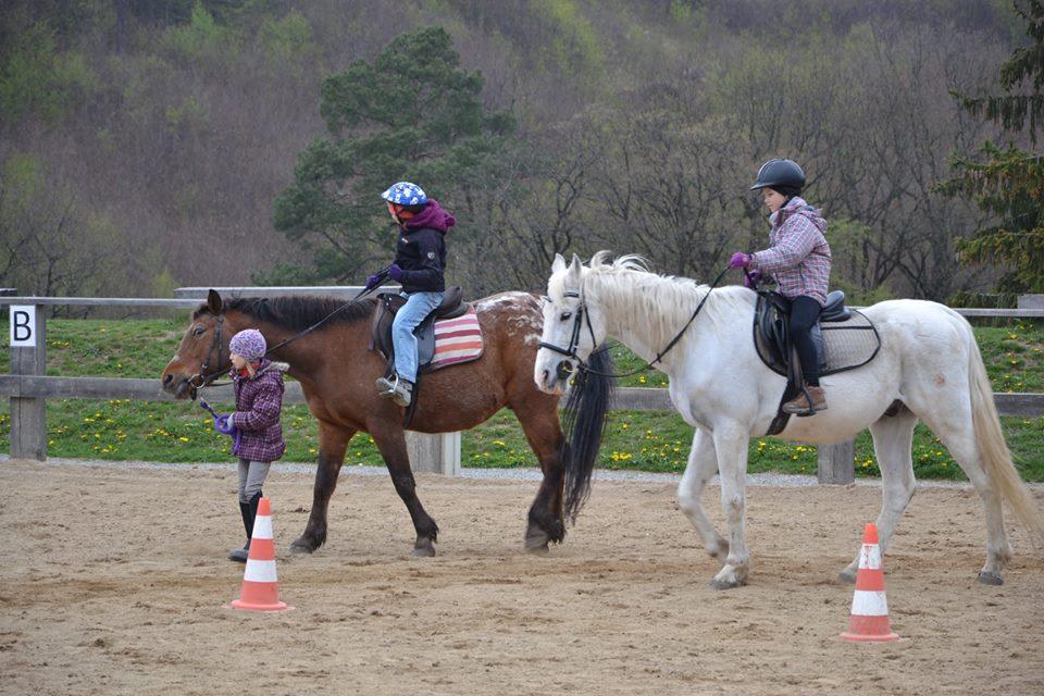 koně 2